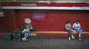 Subway music bear